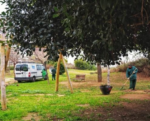 servei de jardineria del ceo del maresme_manteniment de zones verdes