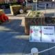 Mataró floreix 2021_servei de jardineria CEO del Maresme_1
